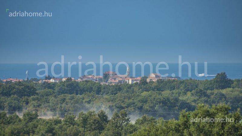 Poreč - Óriási árzuhanás! Luxus villa Poreč közelében